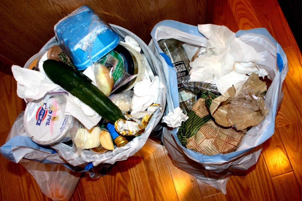 fridge garbage