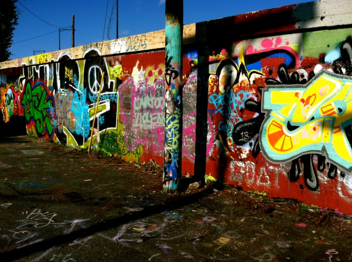 charlottesville 'street art'